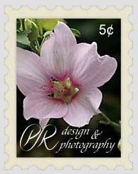 Flower Stamp Image